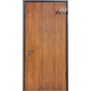 Двери Страж Пруф